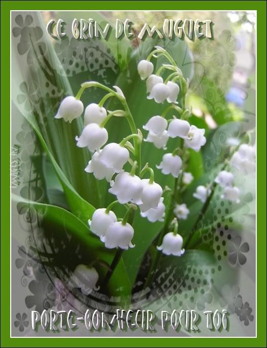 Mes creas 1er mai - Photos de bouquet de muguet ...