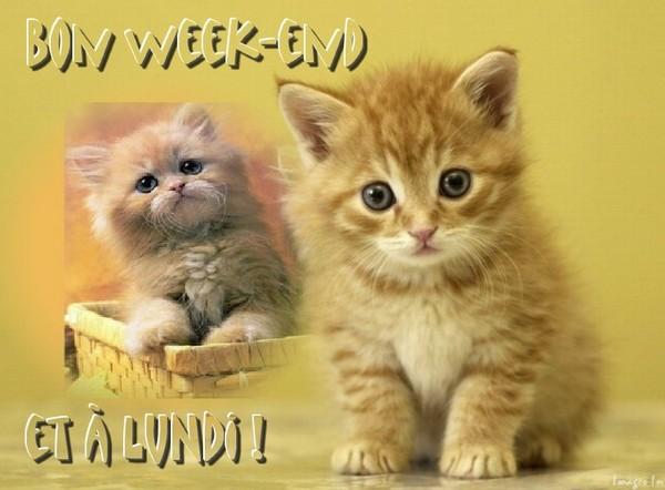 Bon week-end et à bientôt !