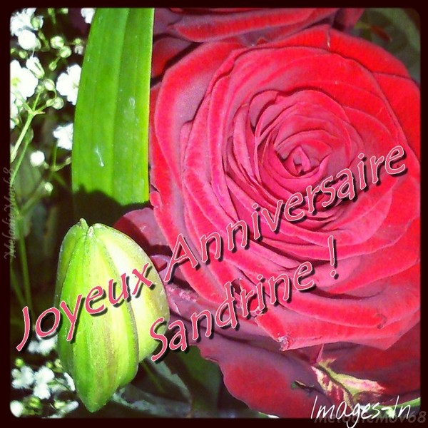 Sandrine joyeux