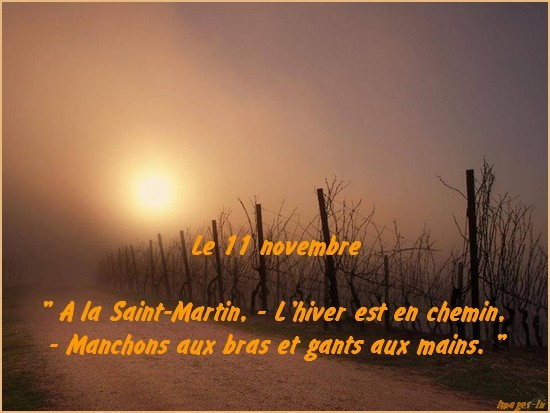 Citation du jour - 11 novembre