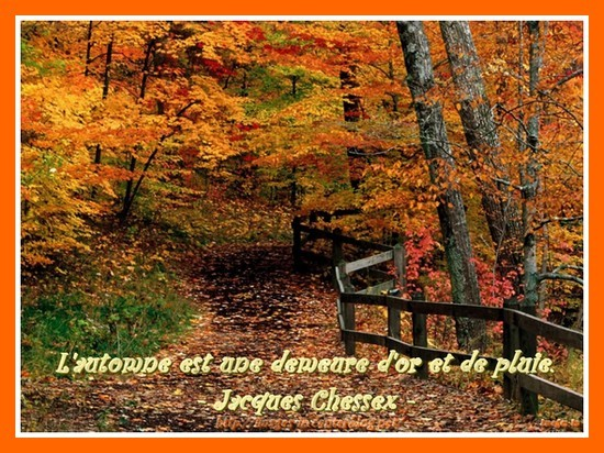 Citation d'Automne ...