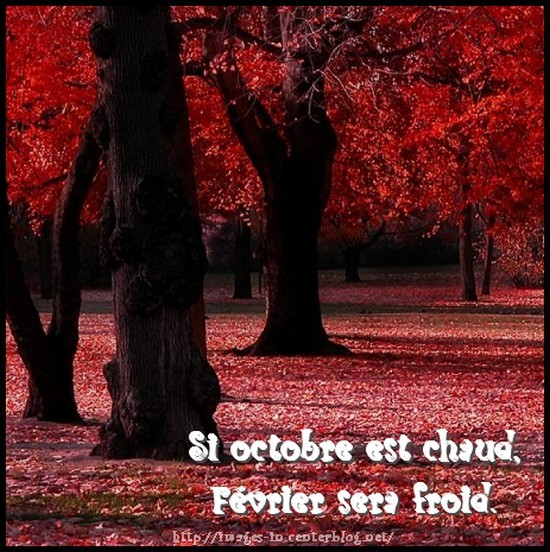 Dicton d'Octobre