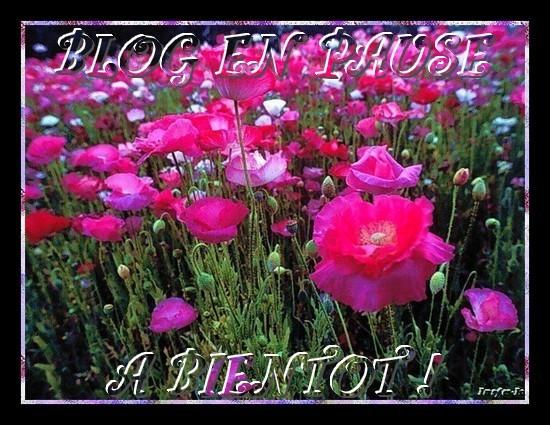 Blog en pause le blog de lesplacards de mameannie - Comment couper un oignon sans pleurer ...