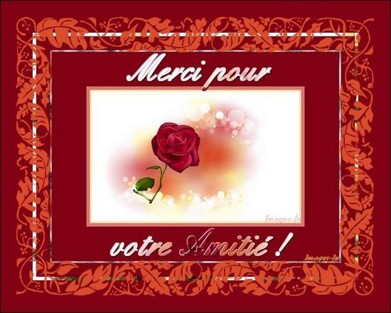 Kdo d'amitié et bonne St Valentin à toutes et tous :) !
