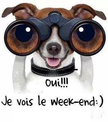 photo drole bon week end