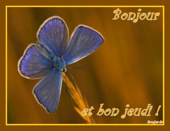 Bonjour  - Page 9 Abc89310