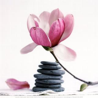 Zen attitude for Image galet zen