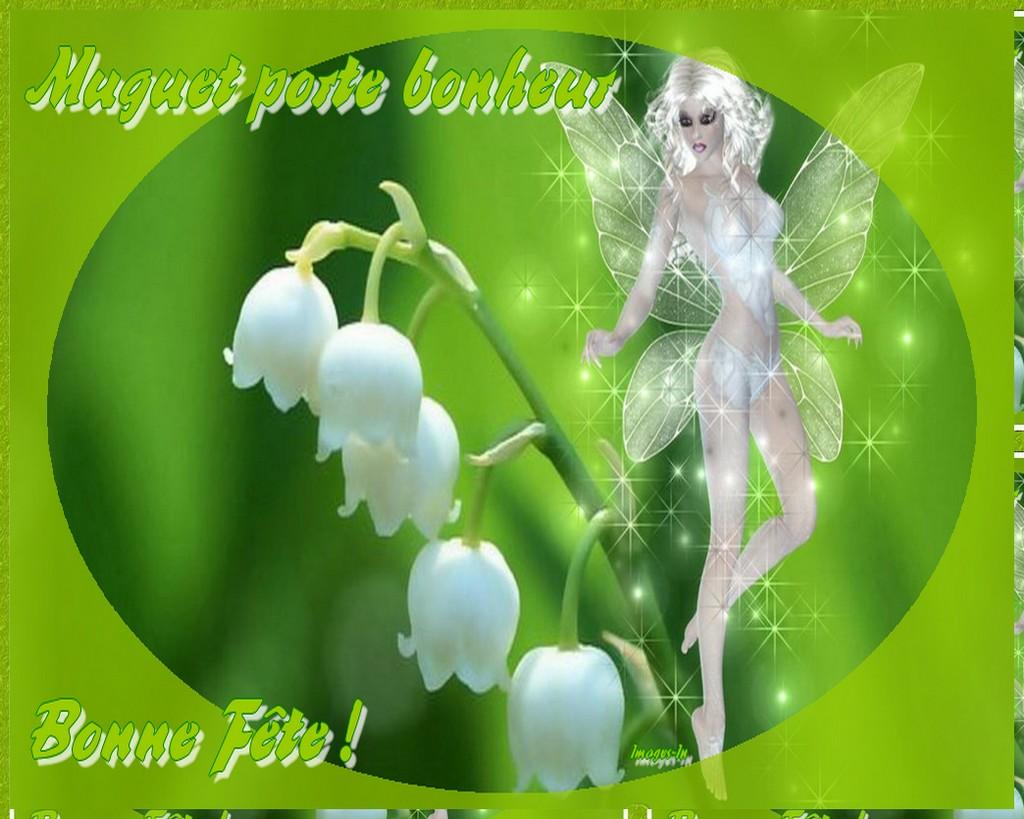 Pin fond ecran muguet fleur papillon 1er mai wallpaper hd - Image muguet 1er mai gratuit ...