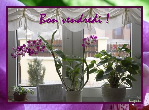 Image du Blog images-in.centerblog.net